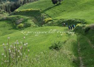 Le passeggiate dell'Onyx 2009 - Matera