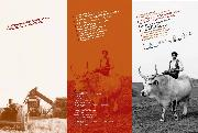 La storia dell agricoltura lucana raccontata dai protagonisti - Matera