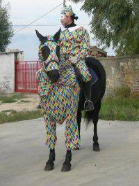 Carnevale a cavallo 2010