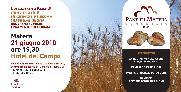 Pane di matera IGP - Matera