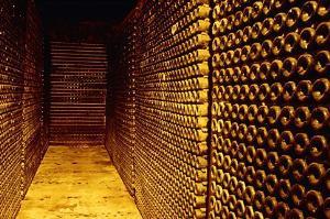 Cantina di vini - Matera