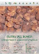 Manifesto della fiera del tartufo - Matera