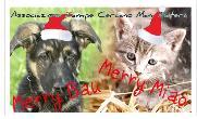 Merry Miao - Merry Bau - Matera