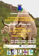 Mostra di animali da reddito e macchine agricole - Matera