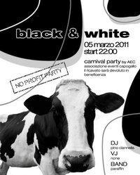 Black & White - Matera
