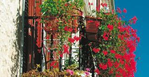 Balcone fiorito - Matera