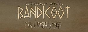 Bandicoot - Matera