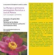 I fiori di primavera -15 aprile 2012 - Matera