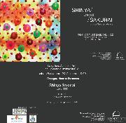 Shinya Sakurai Love Pool - dal 8 dicembre 2012 al 12 gennaio 2012 - Matera