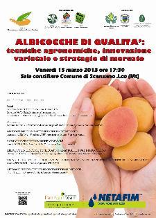 Albicocche di qualità: tecniche agronomiche, innovazione varietale e strategie di mercato - 15 marzo 2013 - Matera