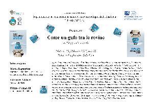 Come un gufo tra le rovine - 15 febbraio 2013 - Matera