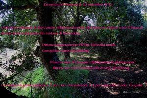 Escursione - Green Way - 10 novembre 2013 - Matera