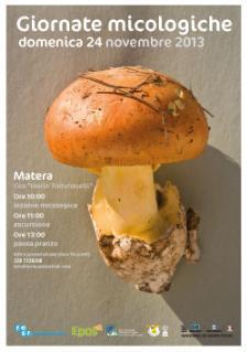 Giornata micologica - 24 novembre 2013 - Matera
