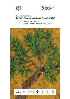 Il Germoplasma olivicolo meridionale - 4 ottobre 2013 - Matera
