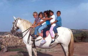 MoM a Cavallo - 16 giugno 2013 - Matera