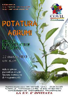 Prove dimostrative di potatura agrumi - Matera
