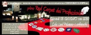 Red Carpet dei Professionisti - 21 giugno 2013 - Matera