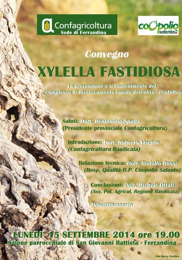 Xylella fastidiosa – la prevenzione e il contenimento del complesso di disseccamento rapido dell´olivo - 15 settembre 2014