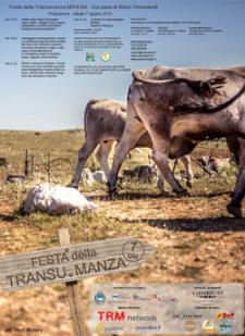 La Festa della Transumanza 2014  - Matera
