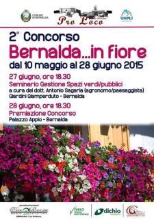 Bernalda in Fiore 2015 - Matera