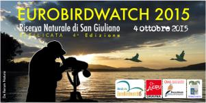 Eurobirdwatch 2015 - Matera