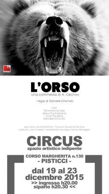 L'Orso sul palco del Circus di Pisticci - Matera