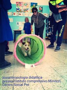 Pet Therapy - Matera
