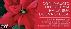 Stelle di Natale AIL 2015 - Matera