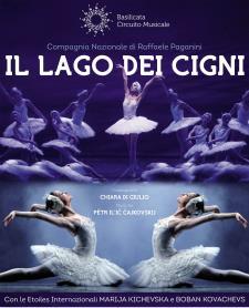Il Lago dei Cigni - 14 Febbraio 2016 - Matera