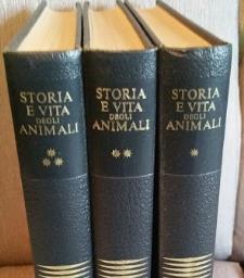Storia e vita degli animali - Matera