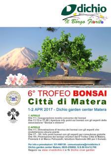 """6° trofeo bonsai """"Città di Matera""""  - Matera"""