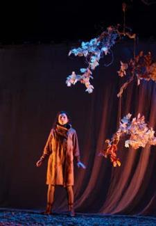 Raperonzolo - Teatro Ragazzi  - Matera