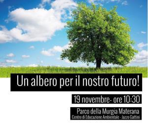 Un albero per il nostro futuro - 19 novembre 2017 - Matera