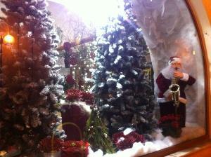 Allestimento natalizio in un negozio di fiori e piante a Matera