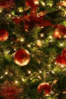 gravina in puglia - 17/12/2009