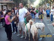 NOME DEL FOTOGRAFO:DANIELE CENTONZE; LUOGO:VIA ANNUNZIATELLA; DATA DELLO SCATTO:02/07/2010.