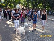 NOME DEL FOTOGRAFO:DANIELE CENTONZE; LUOGO:VIALE EUROPA; DATA DELLO SCATTO:02/07/2010.