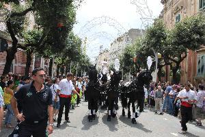 cavalli e carozza bella e importante per la ns Madonna della Bruna!!!
