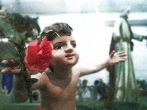 questo fiore e per te protettrice della nostra città e dei nostri cuori! - il sol sorriso non basta...  Antonello D'Aria 24\06\2011 fabbrica del carro Matera