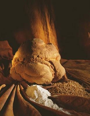 Il Pane di Matera (foto Antonello Di Gennaro)
