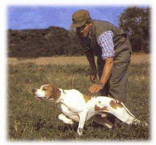immagine di caccia