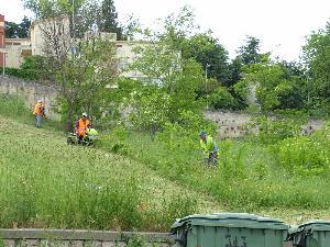 Continua lo sfalcio delle erbe ma i cittadini si lamentano (foto martemix)