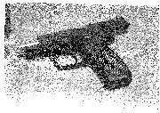 Armi di Ettore Magnifico Monti Condesnitt