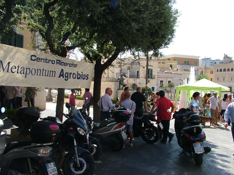 Agrobios in piazza (foto Martemix)