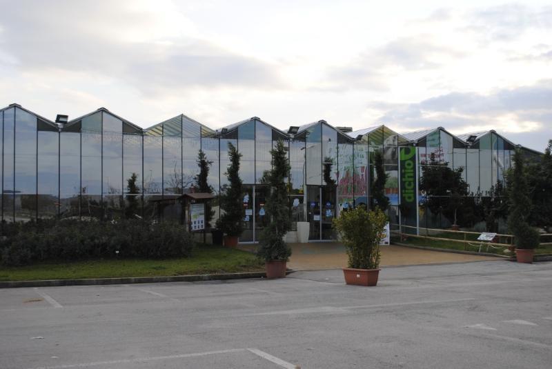 Dichio Garden Center - Matera