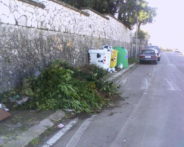 immondizia in strada. Via Passarelli (foto Martemix)