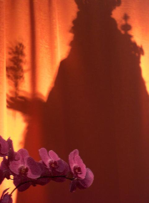 La sua ombra nei nostri cuori