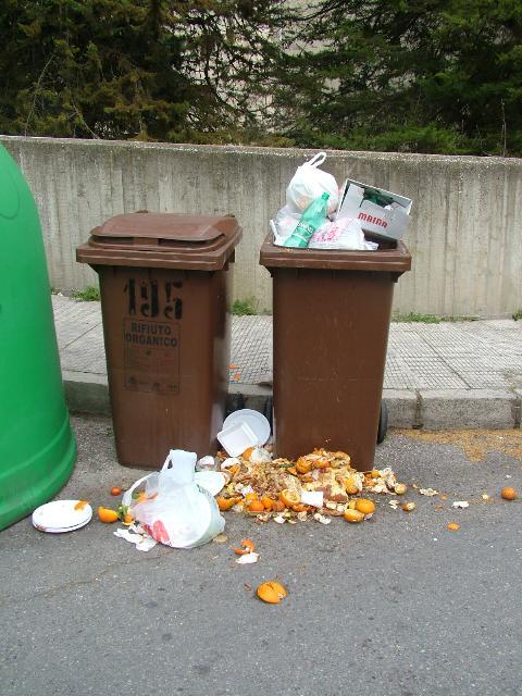 Scene di ordinaria sporcizia (foto Martemix)