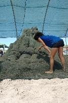 Meraviglie di Sabbia 2011 - La Costituente (Michela Ciappini)