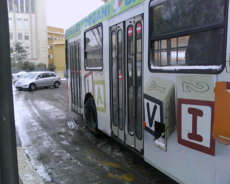 autobus regolarmente funzionanti (foto Martemix)